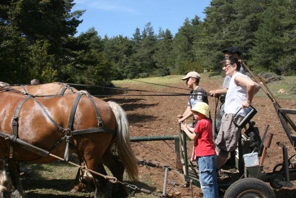 Mai : en route pour la plantation des pommes de terre